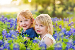 bluebonnet portrait photography